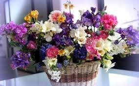 Картинки по запросу Доставка квітів Буковель